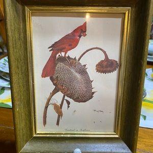 Vintage Ray Harm cardinal framed print